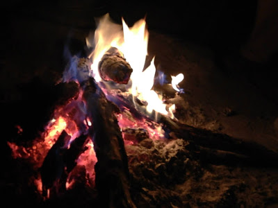 IDDS Camp Fire